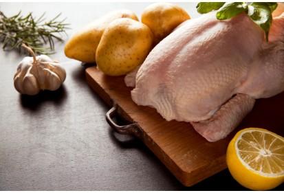 עוף ללא עצם